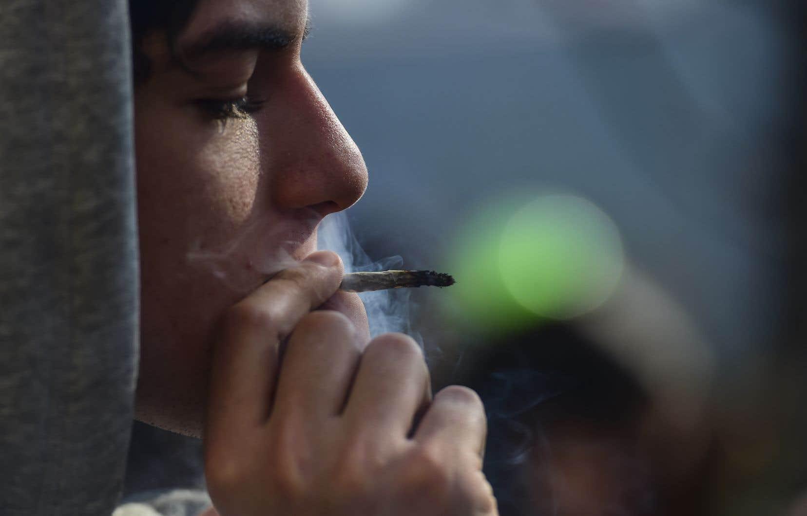 Les arrondissements de Saint-Léonard, Montréal-Nord, Saint-Laurent, Pierrefonds-Roxboro et Rivière-des-Prairies–Pointe-aux-Trembles entendent interdire la consommation du cannabis dans les espaces publics.