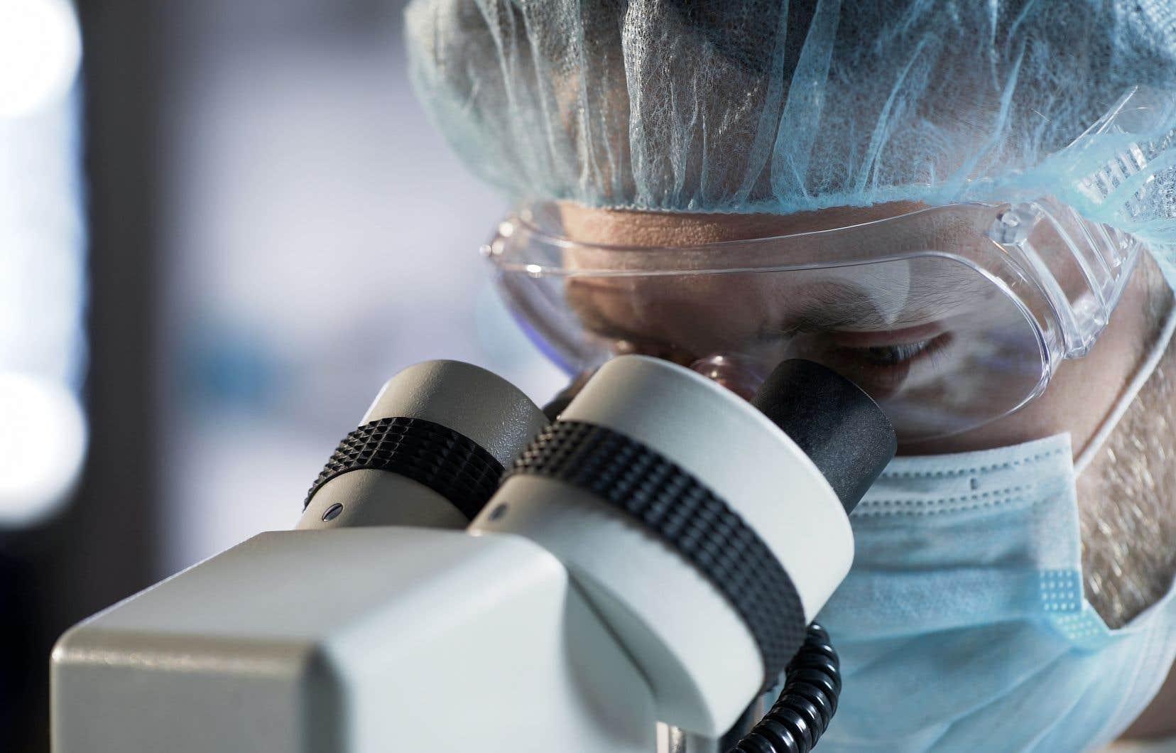 Les chercheurs ont réussi à reconstruire en laboratoire des morceaux de peau comportant un derme et un épiderme, et dont l'épaisseur était comparable à celle des prélèvements effectués sur le patient.