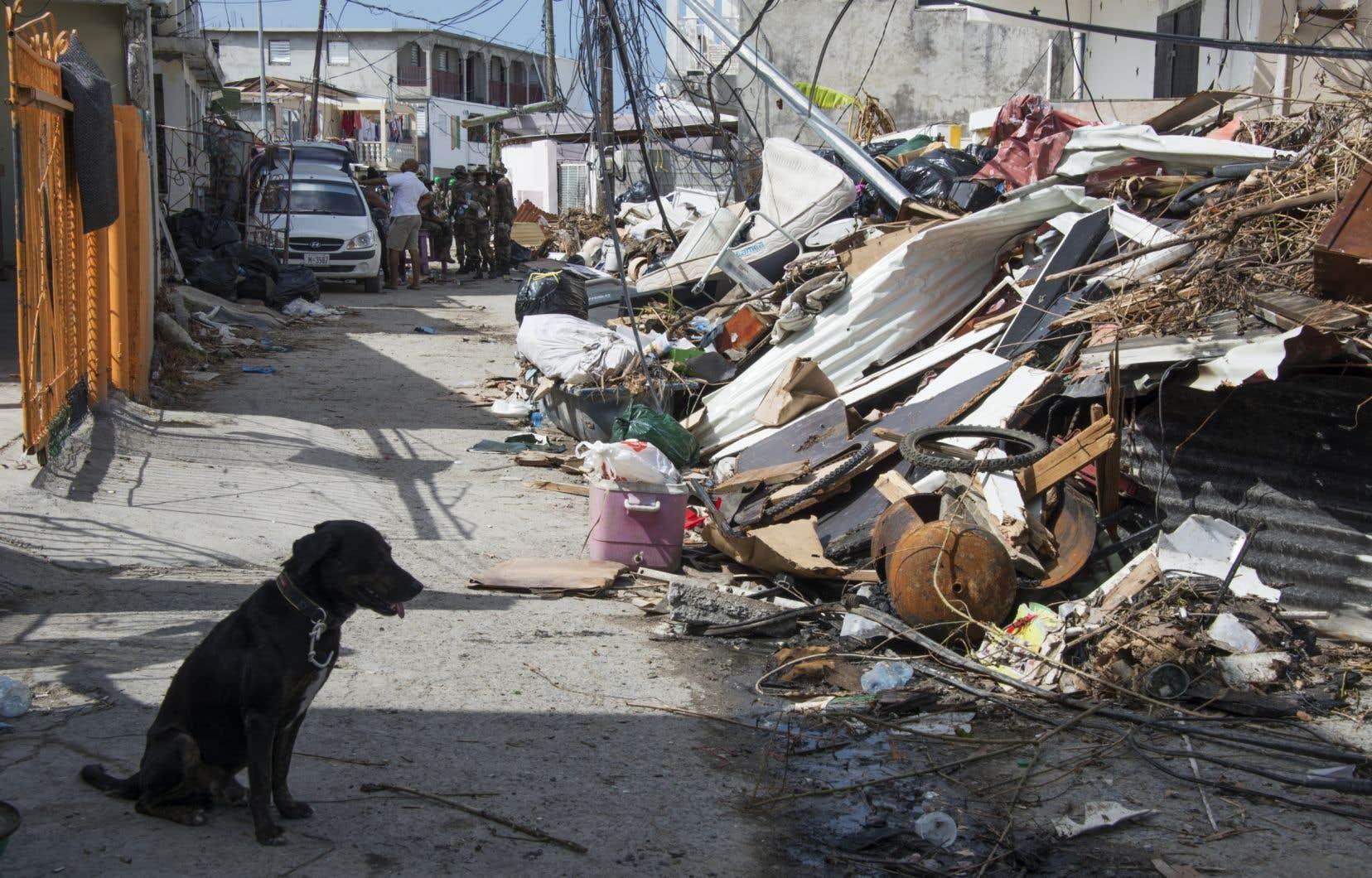 La facture engendrée par les tremblements de terre, les éruptions volcaniques, les inondations, les ouragans et les autres catastrophes climatiques a atteint 2900milliards $US. Sandy Ground, sur l'île de Saint-Martin, a été durement touché par l'ouragan <em>Irma</em> en 2017.