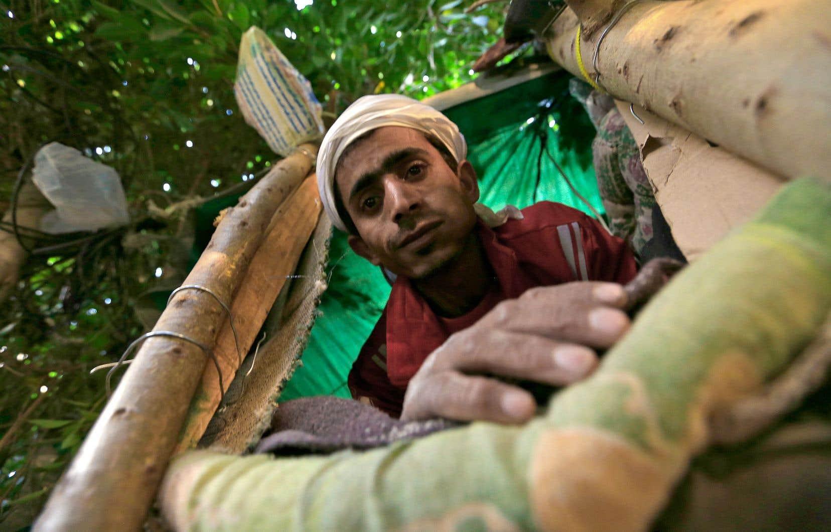 M. Houbeichi a d'abord dormi dans la rue, avant d'avoir l'idée de s'installer dans un ficus situé sur le terre-plein séparant deux allées très fréquentées de la « Rue 30 » de la capitale yéménite.