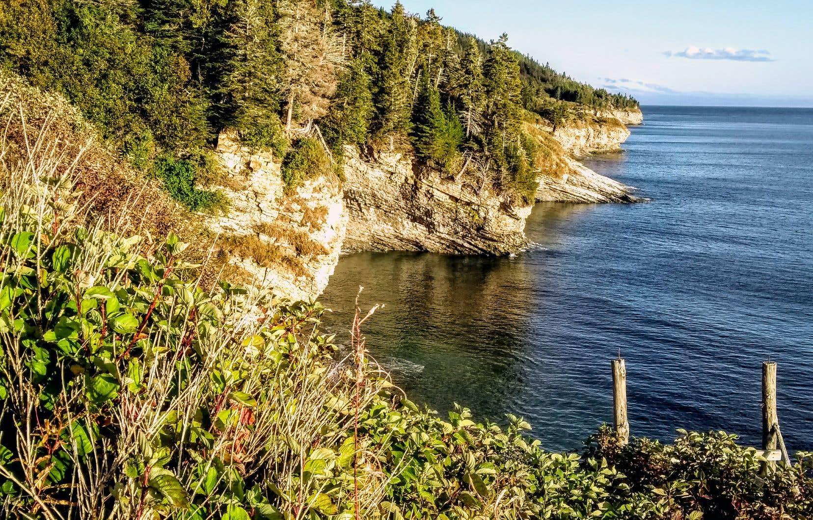 Le sentier des Graves vous mène dans un milieu vallonné le long de la baie, d'où peuvent être aperçus rorquals, phoques et cormorans.