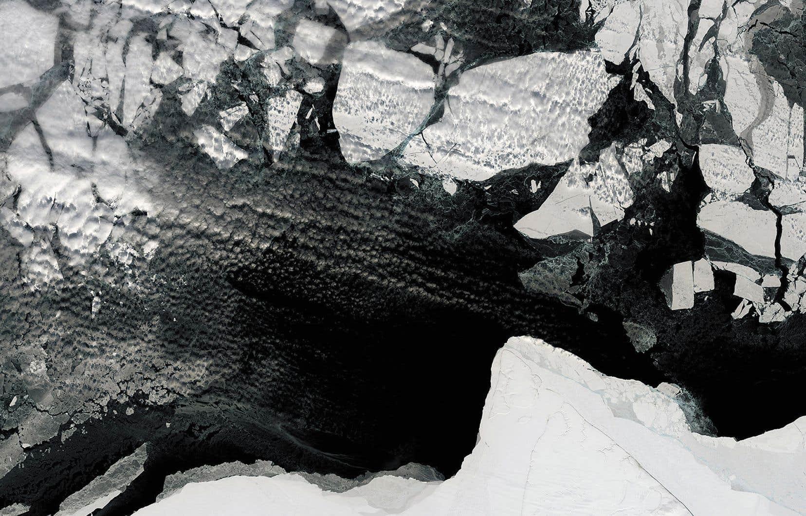 Les régions polaires subissent certains des effets les plus intenses des changements climatiques. Sur cette photo d'avril 2016, la glace de mer se fragmente plus tôt dans la saison qu'à l'habitube.