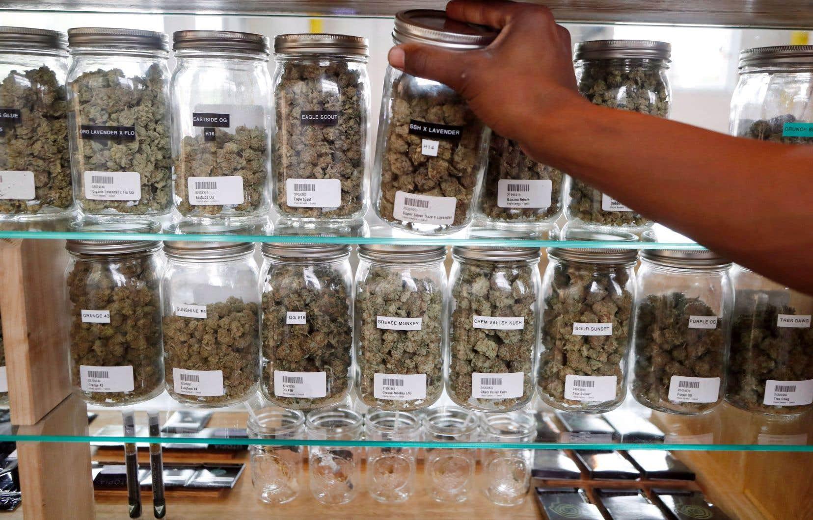 Le cannabis médical était déjà légal au Michigan, comme dans 29 autres États. Il l'est maintenant dans 2 États de plus.