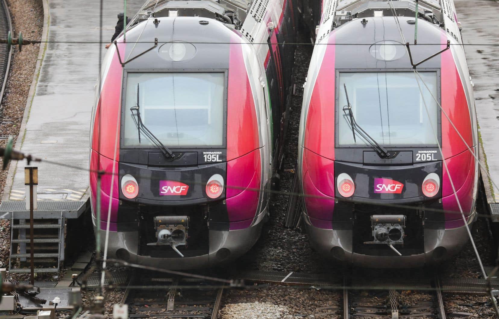 Conçus et fabriqués sur le site français de Bombardier à Crespin, les trains offriront une capacité de 463 places assises.