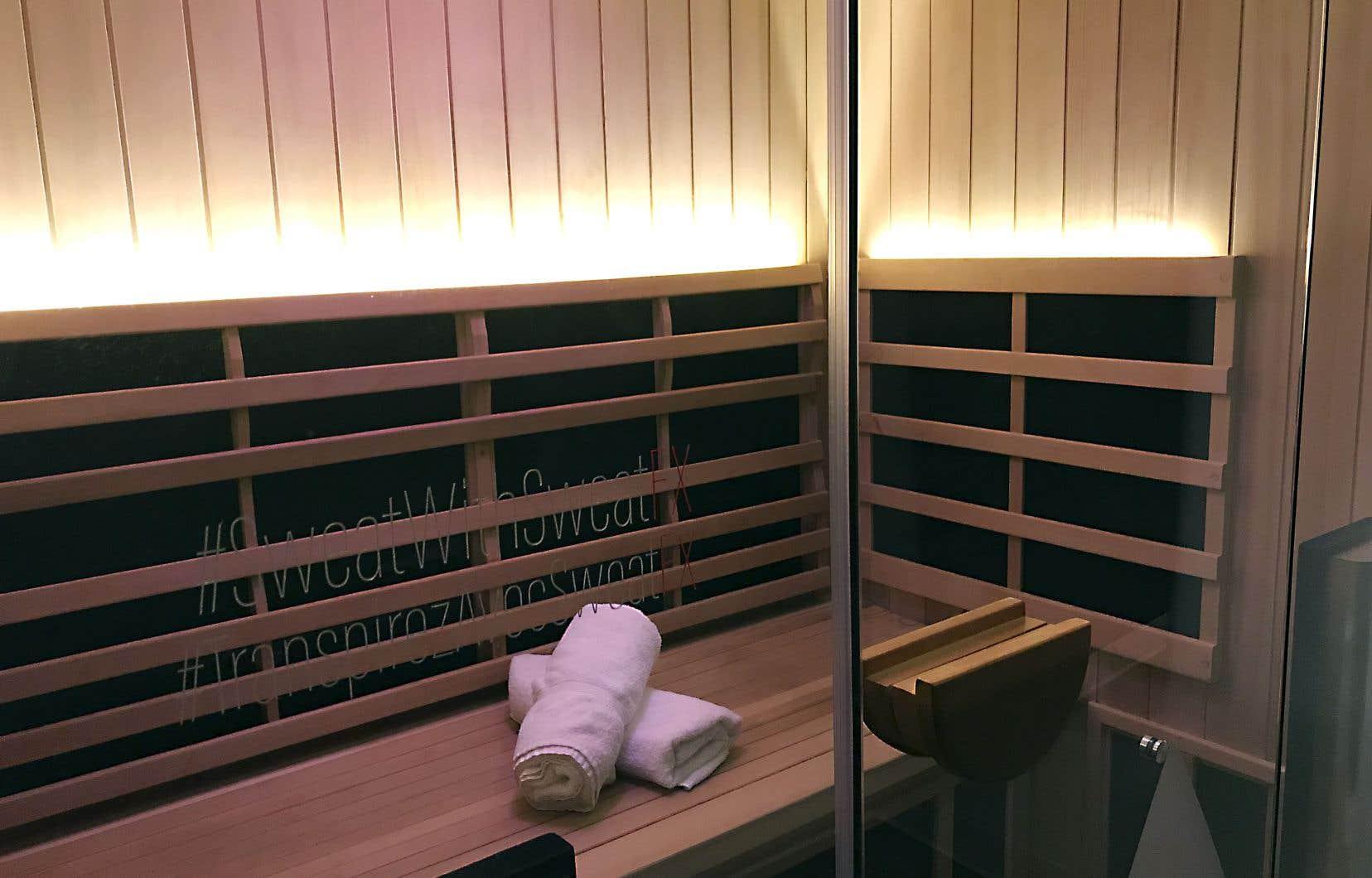 La fièvre du moment dans les spas est le sauna à infrarouge lointain (SIRL).