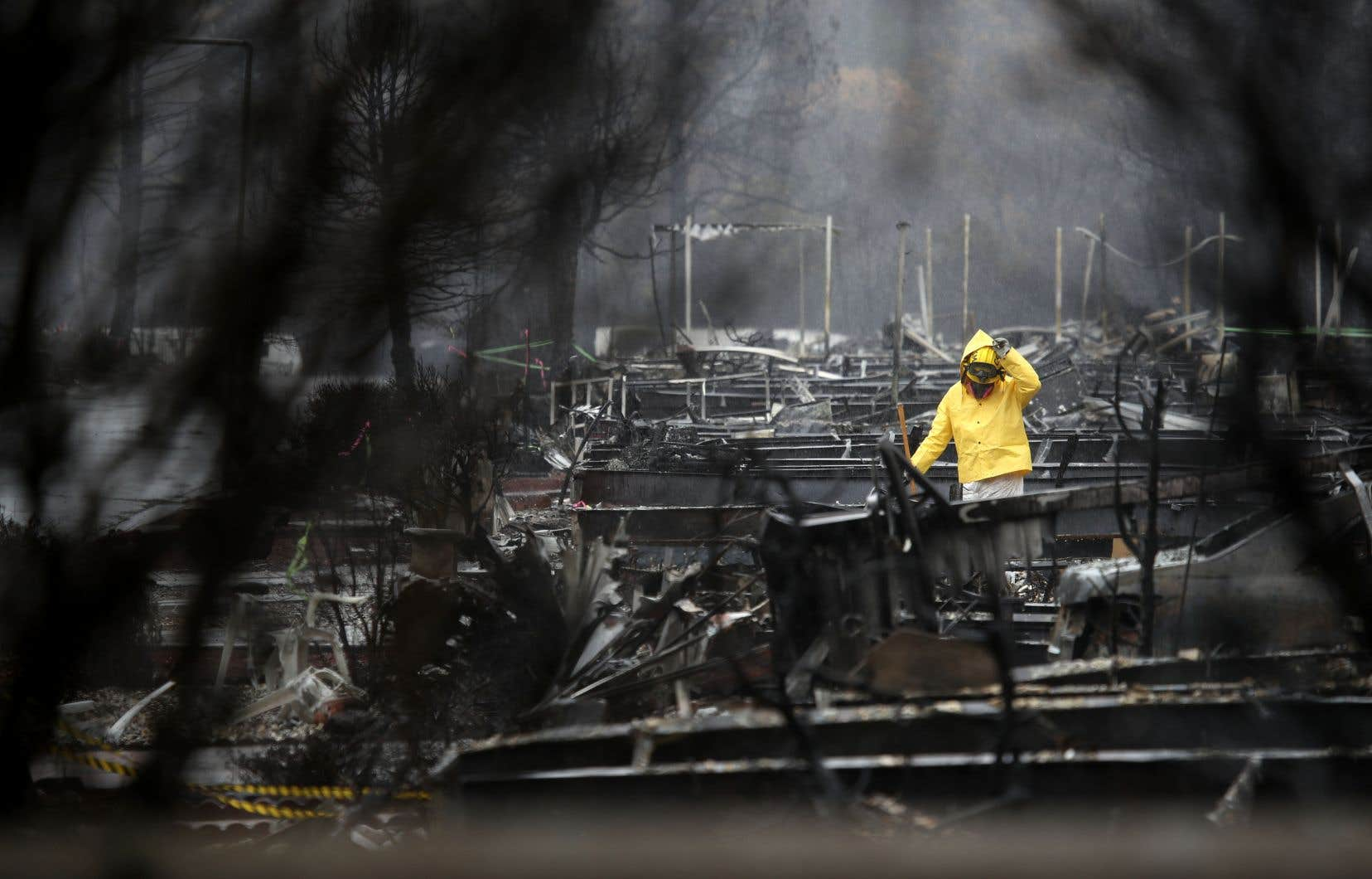 «Camp Fire»,qui a brûlé quelque 620km2, a notamment rasé la ville de Paradise.