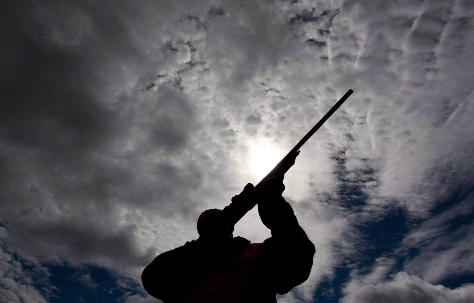 Les Canadiens débattent de la valeur du registre des armes à feu depuis des années.