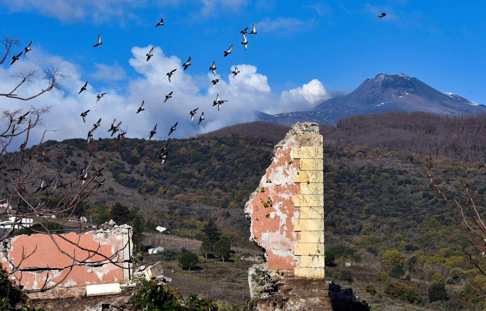 La forte secousse a eu lieu au sud-est du volcan, à 5 km de la mer, où sont situées des petites communes agricoles et viticoles.