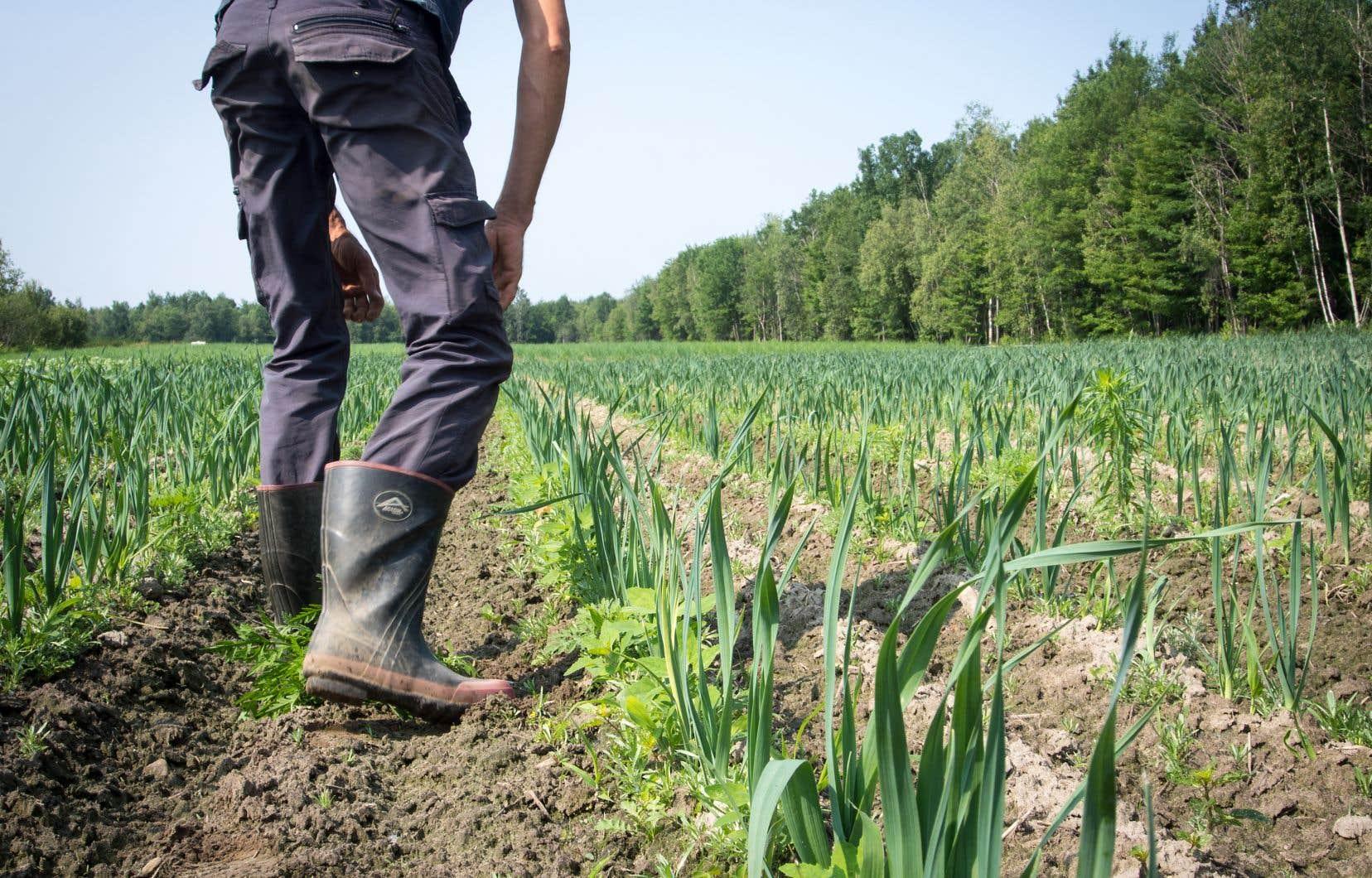 <p>Les visites à la ferme nous aident à prendre conscience de tout le travail qui se cache derrière ce que l'on mange.</p>