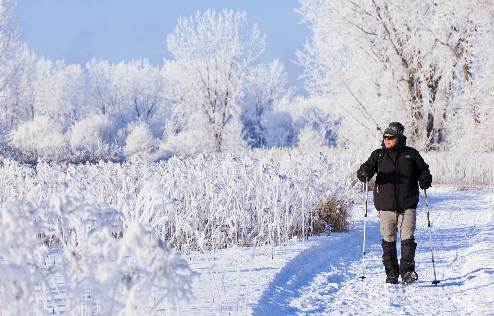 Le parc national des Îles-de-Boucherville, terrain de jeu des Montréalais, très populaire en été, a su attirer les visiteurs avec ses cinq soirées aux flambeaux durant l'hiver.