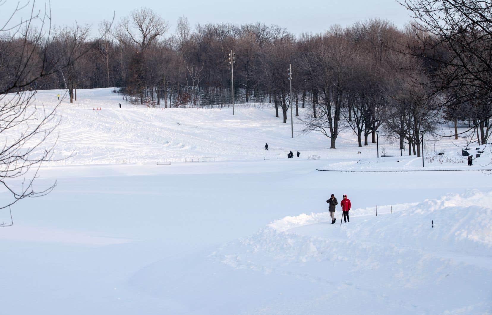 Un projet d'épreuve de la Coupe du monde de ski alpin sur les pentes du mont Royal a été refusé par la Ville.