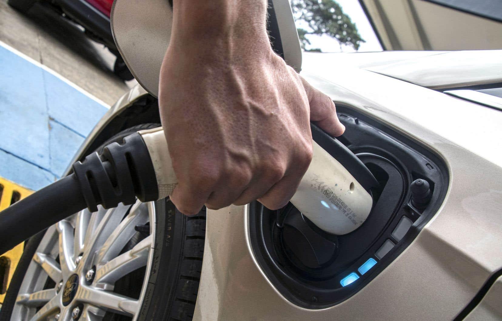 Le Costaricain Roberto Quiros, propriétaire de deux véhicules électriques, chargeait l'un d'eux à l'une des bornes du circuit de l'ICE, à San José, le 4décembre dernier.