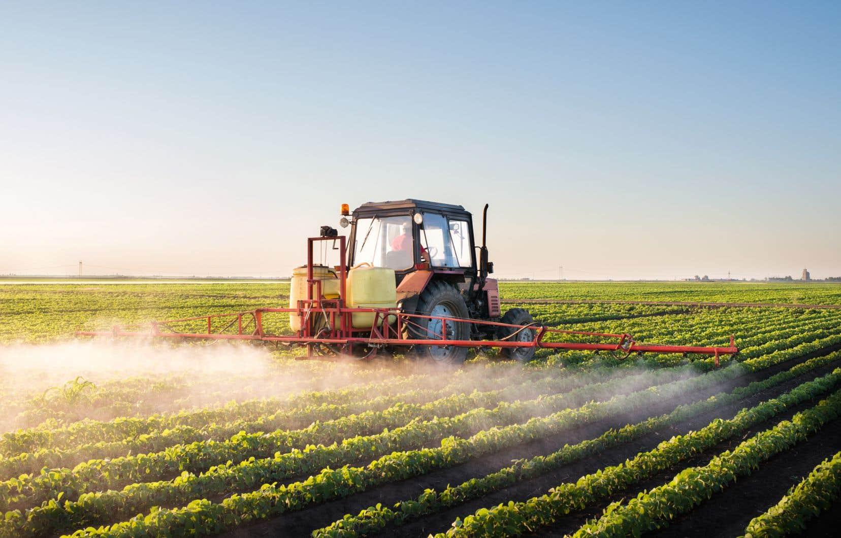 Le Centre de recherche sur les grains (CEROM) s'est fait imposer une restructuration par le ministère de l'Agriculture après les révélations faites dans les médias l'an dernier.