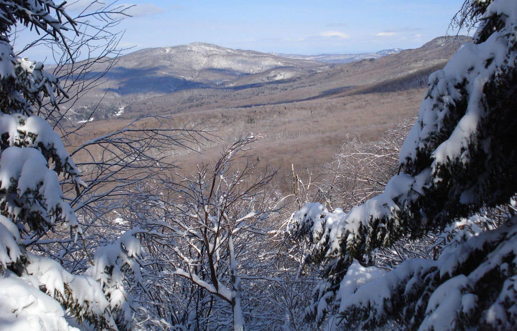 La réserve naturelle des Montagnes-Vertes, c'est le paradis de la randonnée pédestre, du ski nordique et de la raquette.