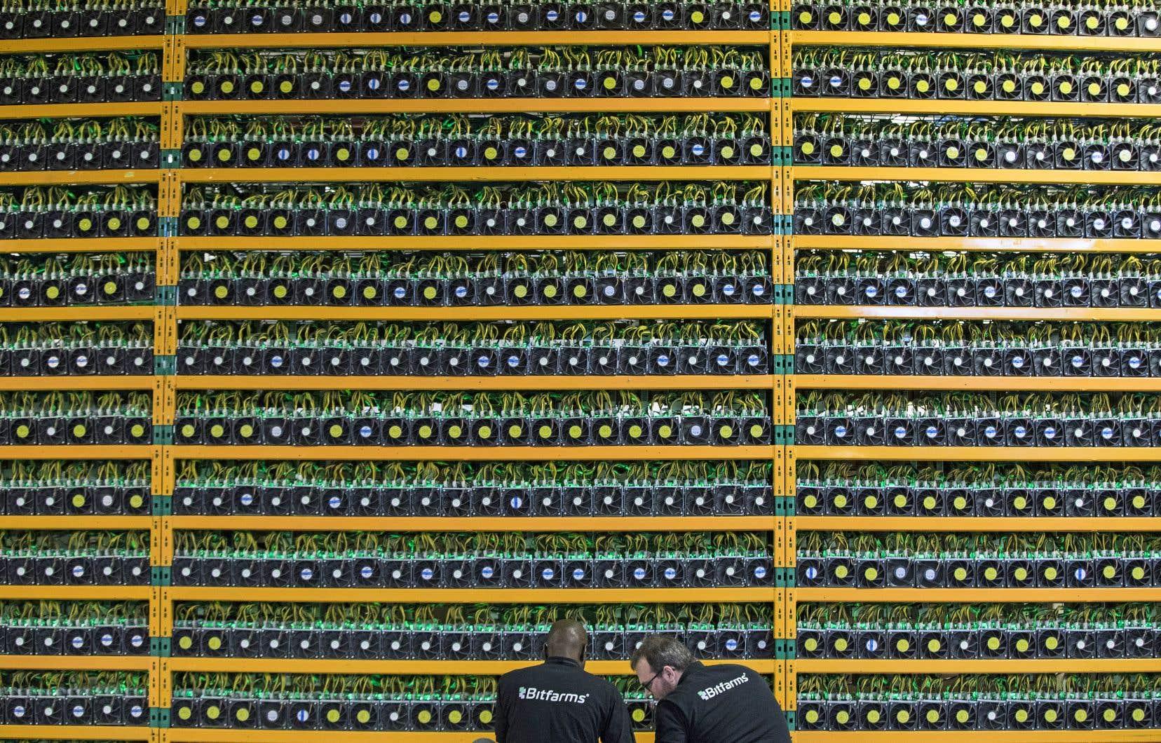 Deux techniciens de Bitfarms, à Saint-Hyacinthe, inspectent l'équipement de minage de la cryptomonnaie.