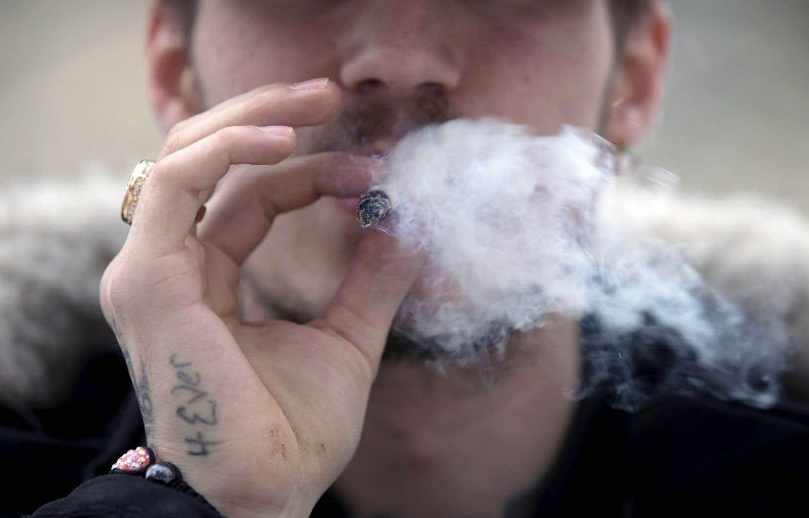 Le ministre délégué à la Santé et aux Services sociaux, Lionel Carmant, a averti que son intention de hausser l'âge légal pour consommer du cannabis restera inchangée.