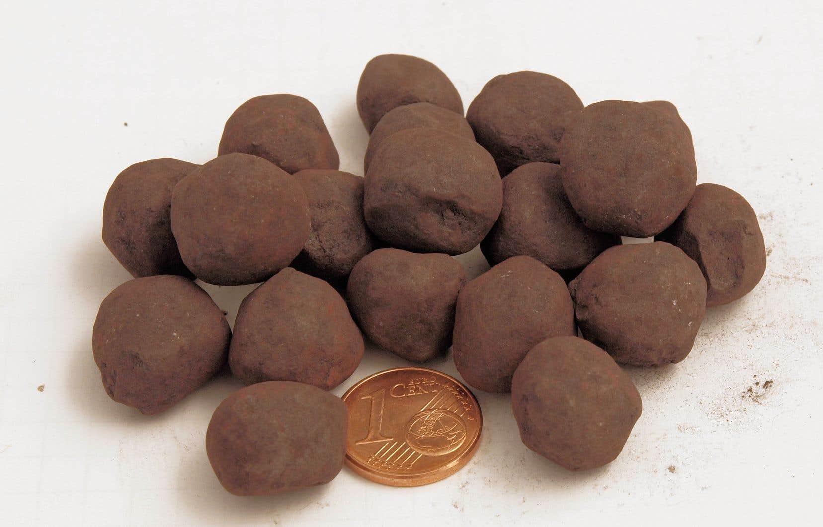 Boulettes produites à partir du minerai de fer