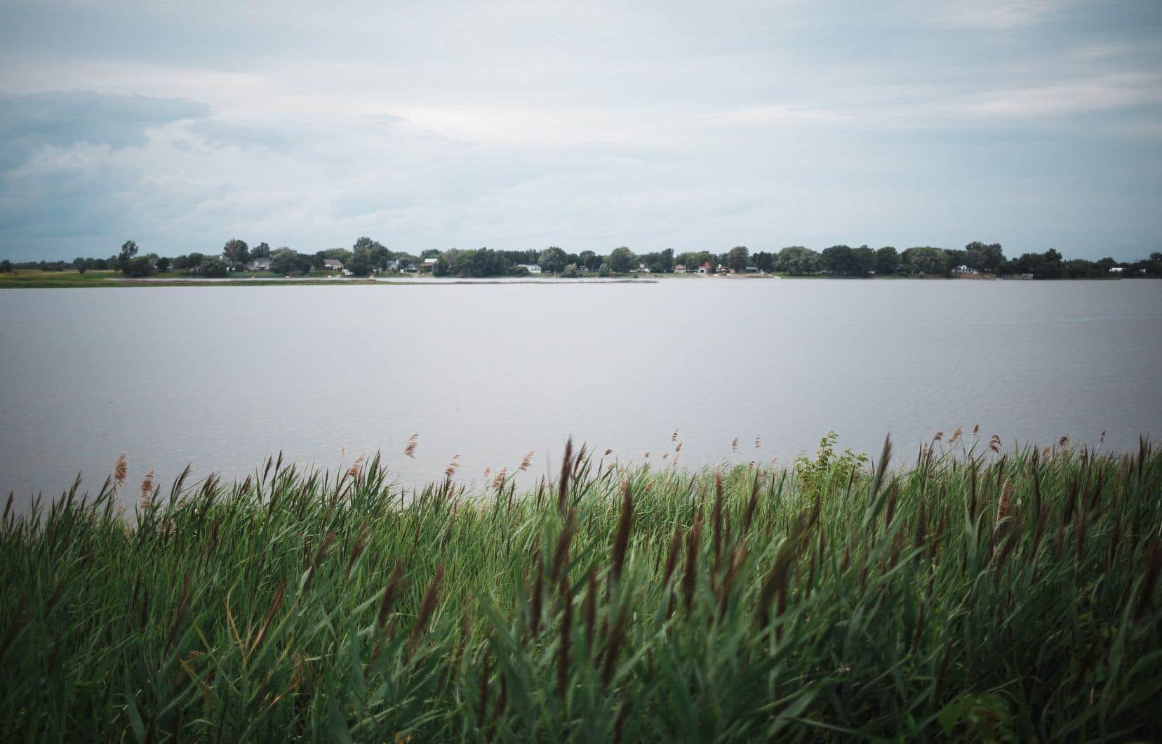 <p>Montréal convoite des terrains situés en rive, notamment le long de la rivière des Prairies.</p>