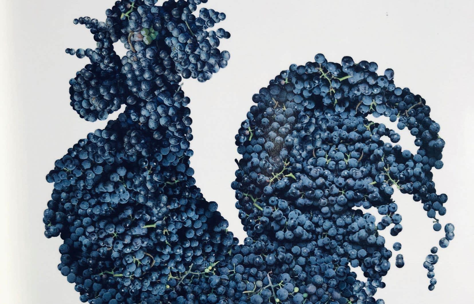 Le célèbre coq noir du Chianti Classico est aussi délicieux en coq au vin. À base de sangiovese, tout naturellement!