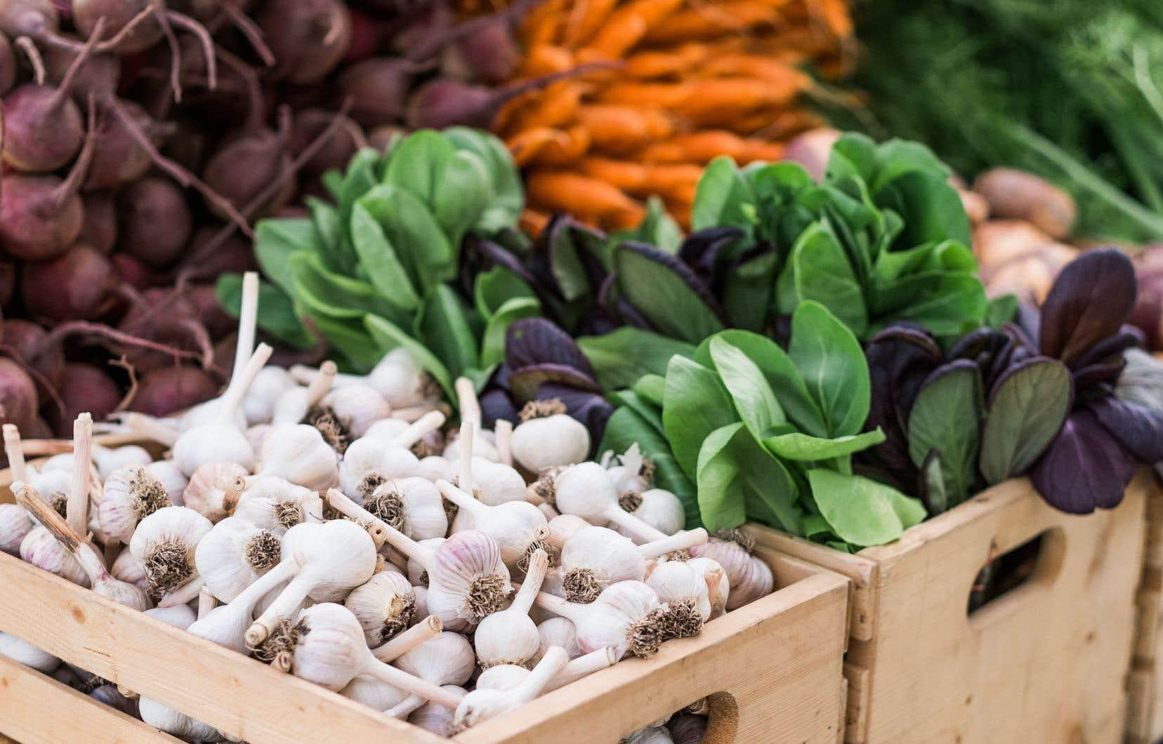 Le mouvement florissant Réseau des fermiers de famille a métamorphosé l'offre d'aliments biologiques d'un bout à l'autre du Québec.