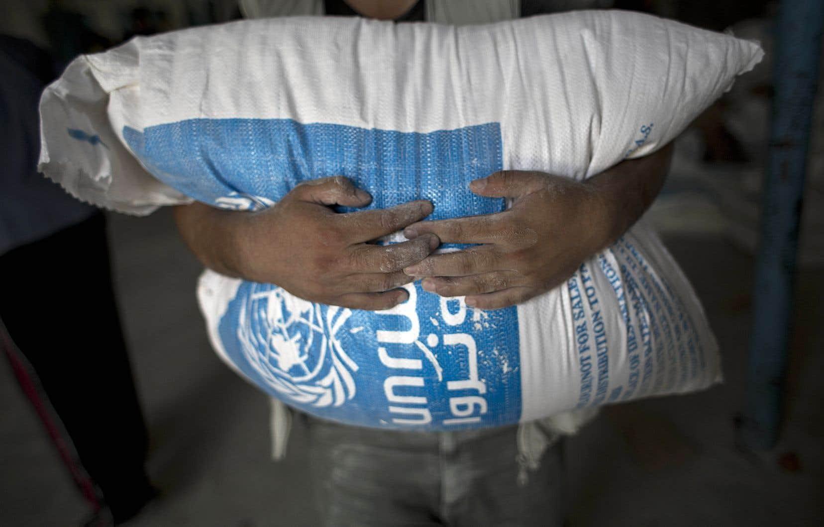 Distribution de farine par l'Office de secours et de travaux des Nations unies pour les réfugiés de Palestine au Proche-Orient, à Rafah