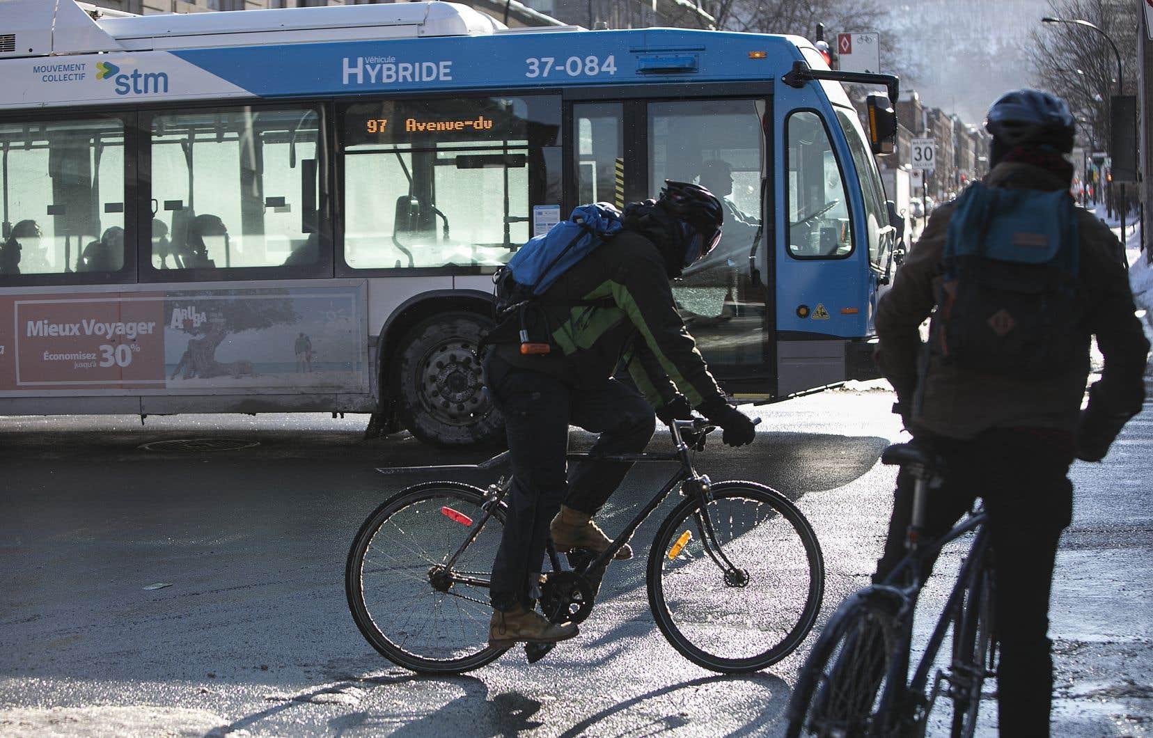 Il y aurait 285 de ces autobus à la Société de transport de Montréal.