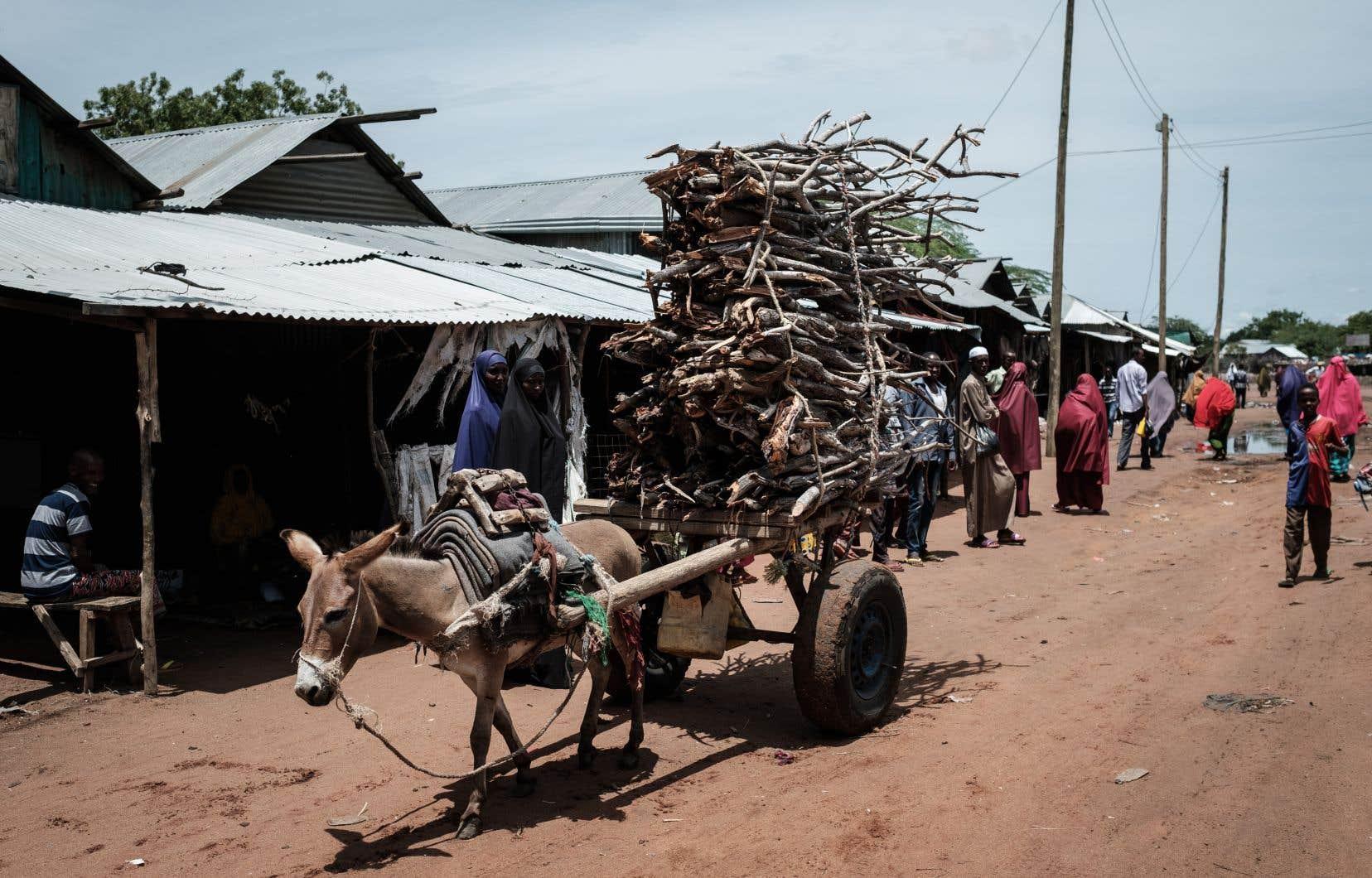 Situé à l'est du Kenya, le camp de Dadaab héberge quelque 230 000 personnes.
