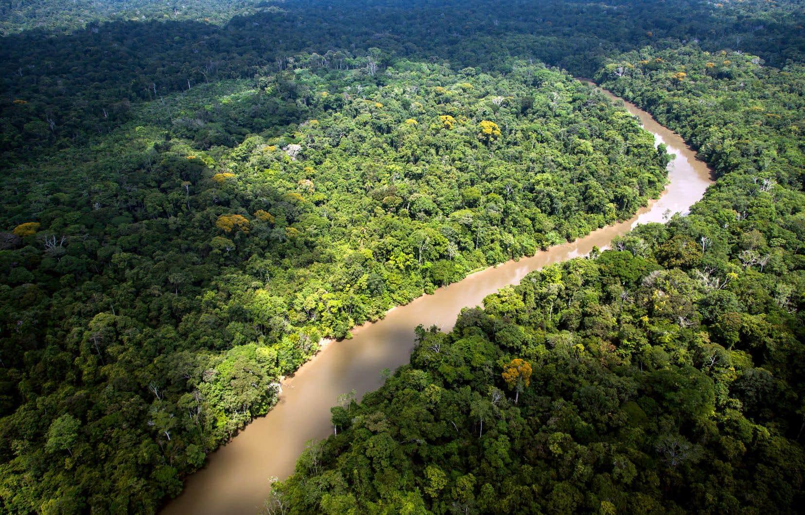 En 2018, il existait plus de 100 peuples non contactés, répartis principalement en Amazonie (photo), en Indonésie et en Papouasie–Nouvelle-Guinée.