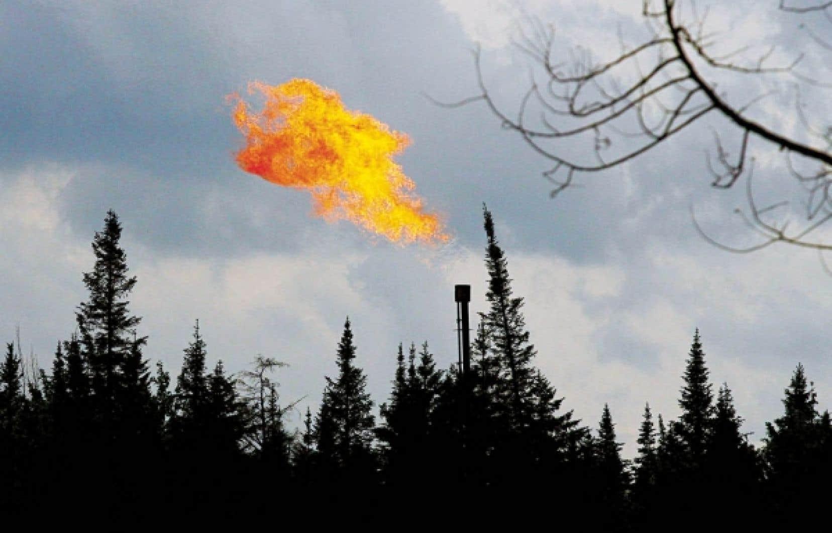 En l'absence d'études rigoureuses et validées, l'exploitation du gaz de schiste correspond à une vaste expérimentation aux dépens des citoyens et des écosystèmes.<br />