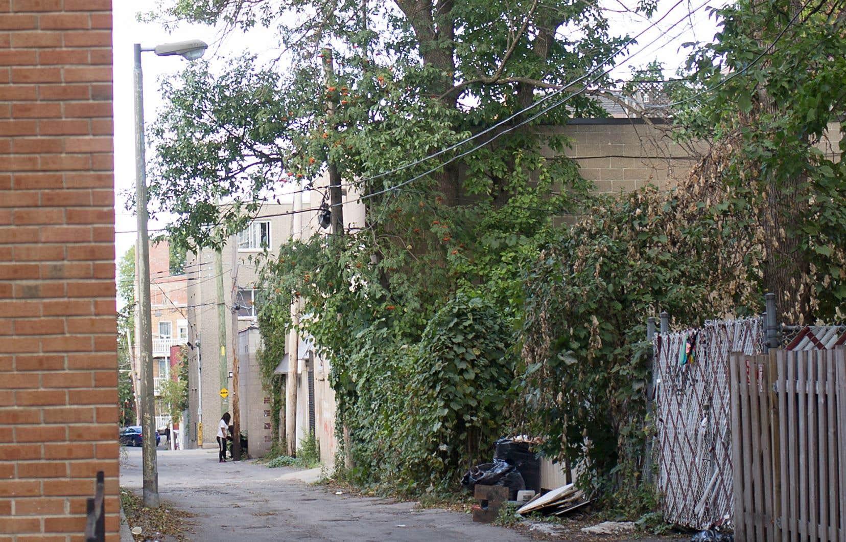 Simon Leduc brosse le portrait hyperréaliste d'un quartier défavorisé.