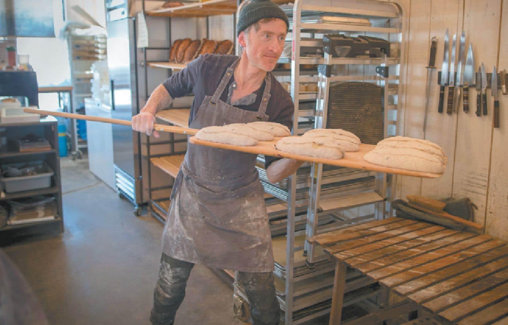 Emmanuel Bilodeau enfournant le pain à la boulangerie Merci la vie: «Dans ce métier, tu donnes ton âme à tes clients.»