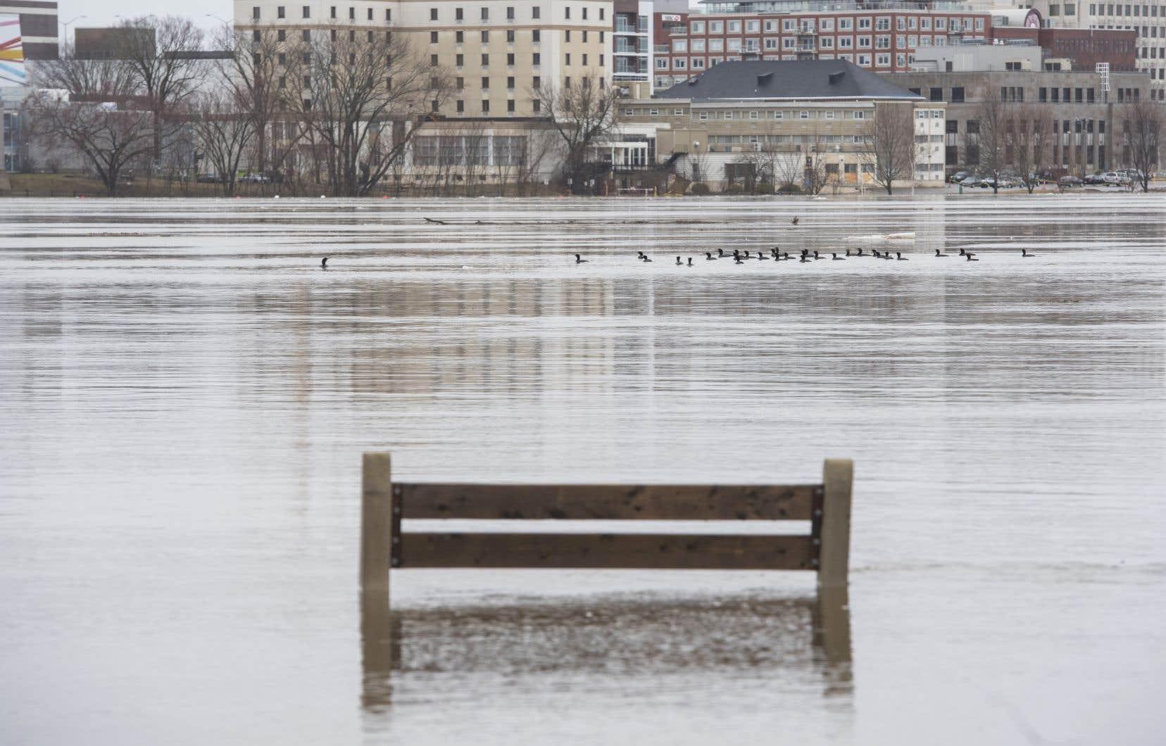 Les niveaux d'eau dans le bassin du fleuve Saint-Jean doivent s'élever au cours des prochains jours.