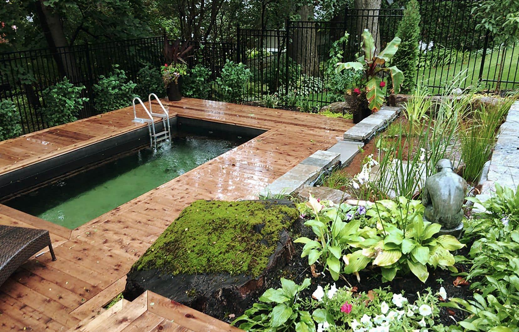 L'avantage premier d'une piscine naturelle ou d'un étang de baignade est la qualité de l'eau, s'accordent à dire leurs fabricants.