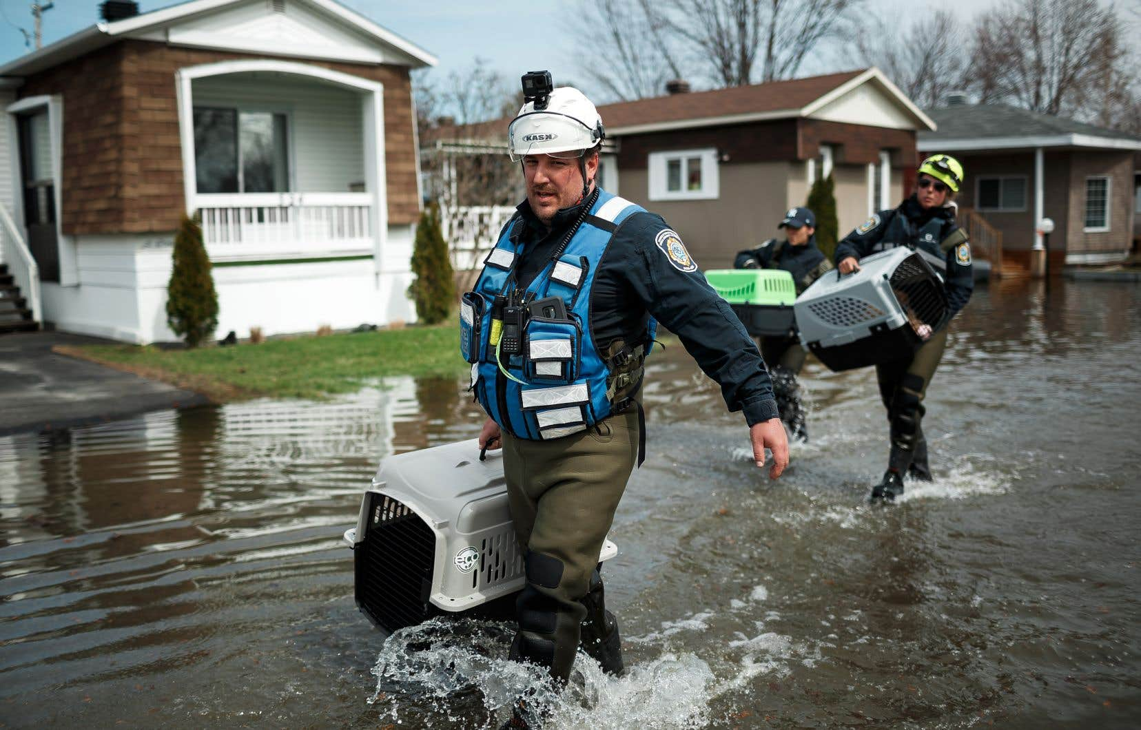 Certains évacués ont pu récupérer les animaux qu'ils avaient dû laisser derrière eux au moment d'évacuer leur résidence.