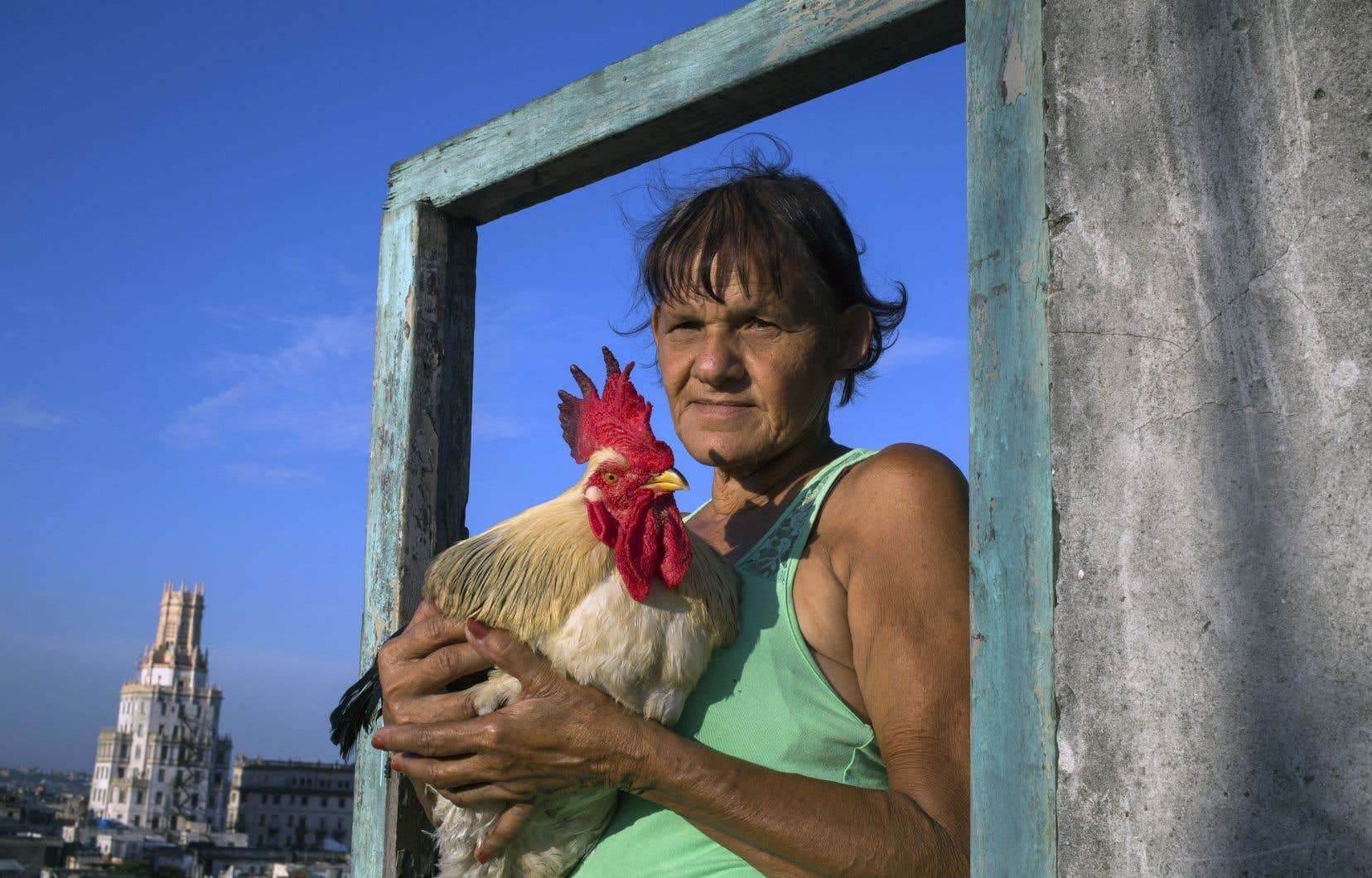 Retranchés en surplomb de la société cubaine, les participants du documentaire posent sur celle-ci un regard plein d'acuité.