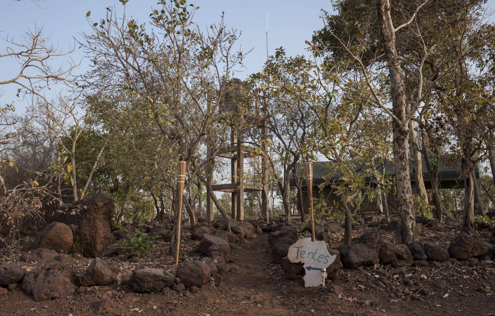 Les deux touristes français auraient disparu dans le parc national de la Pendjari, au Bénin.