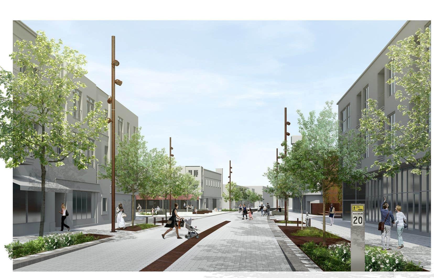Le projet implique une réduction de la vitesse automobile à 20km/h rue Ontario, entre Nicolet et Bourbonnière, ainsi que sur l'avenue Valois, entre de Rouen et La Fontaine. Un temps d'adaptation sera nécessaire pour que la cohabitation entre les piétons, les cyclistes et les automobilistes devienne fluide.