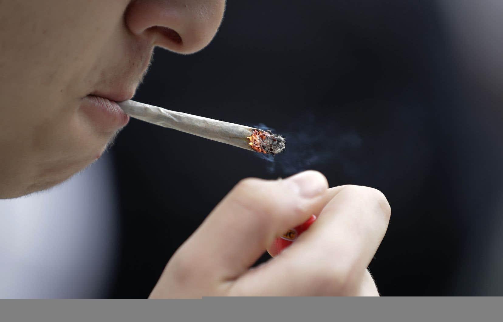 LaCAQ avait martelé en campagne électorale qu'elle allait interdire le cannabis dans les parcs.