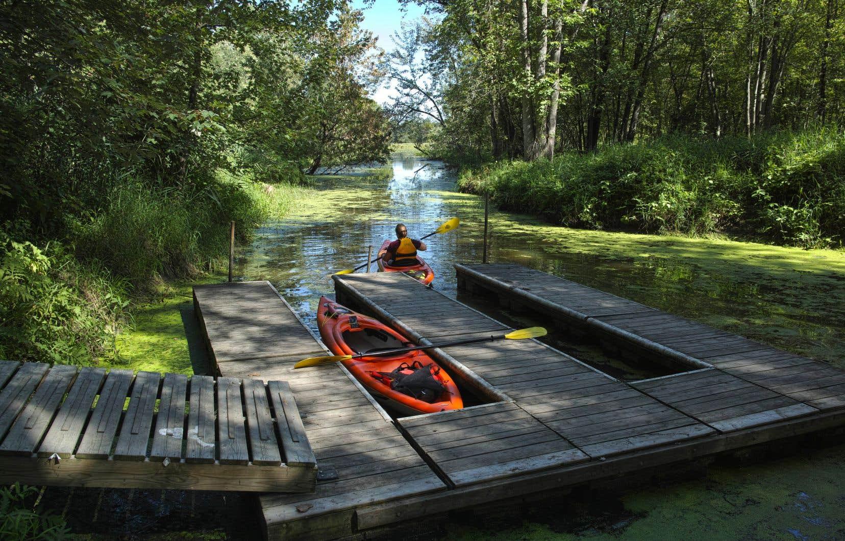 Le Québec compte désormais 10,03 %d'aires protégées, soit loin de la cible de 17 % d'aires protégées terrestres ou marines qu'il s'est engagé à atteindre dès l'an prochain.