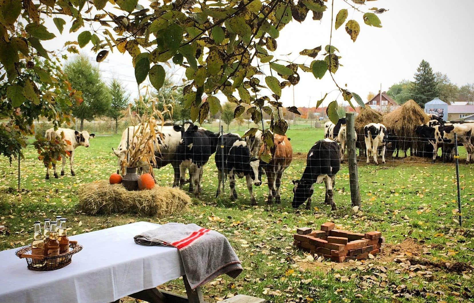 L'agrotourisme permet de reconnecter avec l'origine des aliments, de reconstruire une proximité physique et affective avec l'agriculture.