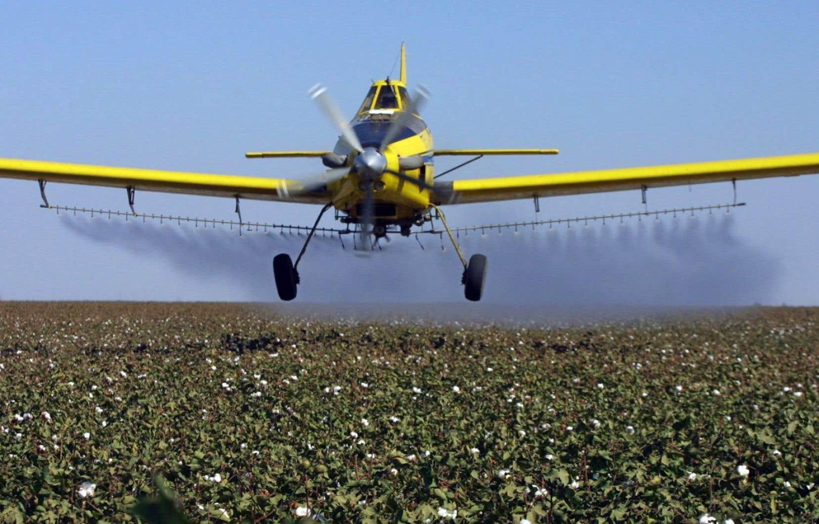 <p>Sur 374 principes actifs autorisés pour l'agriculture aux États-Unis en 2016, 72 étaient interdits dans l'Union européenne.</p>
