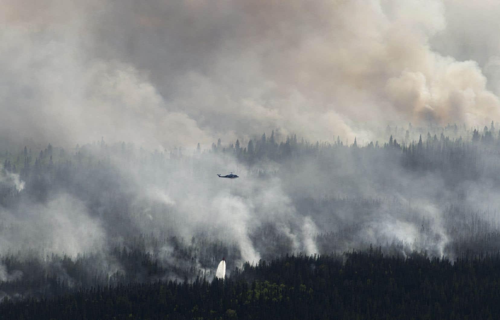 Près de 5000 résidants de High Level et des environs ont dû quitter leur domicile le mois dernier en raison de la progression de l'incendie de forêt Chuckegg Creek; ils ont été autorisés à rentrer chez eux le 2juin.