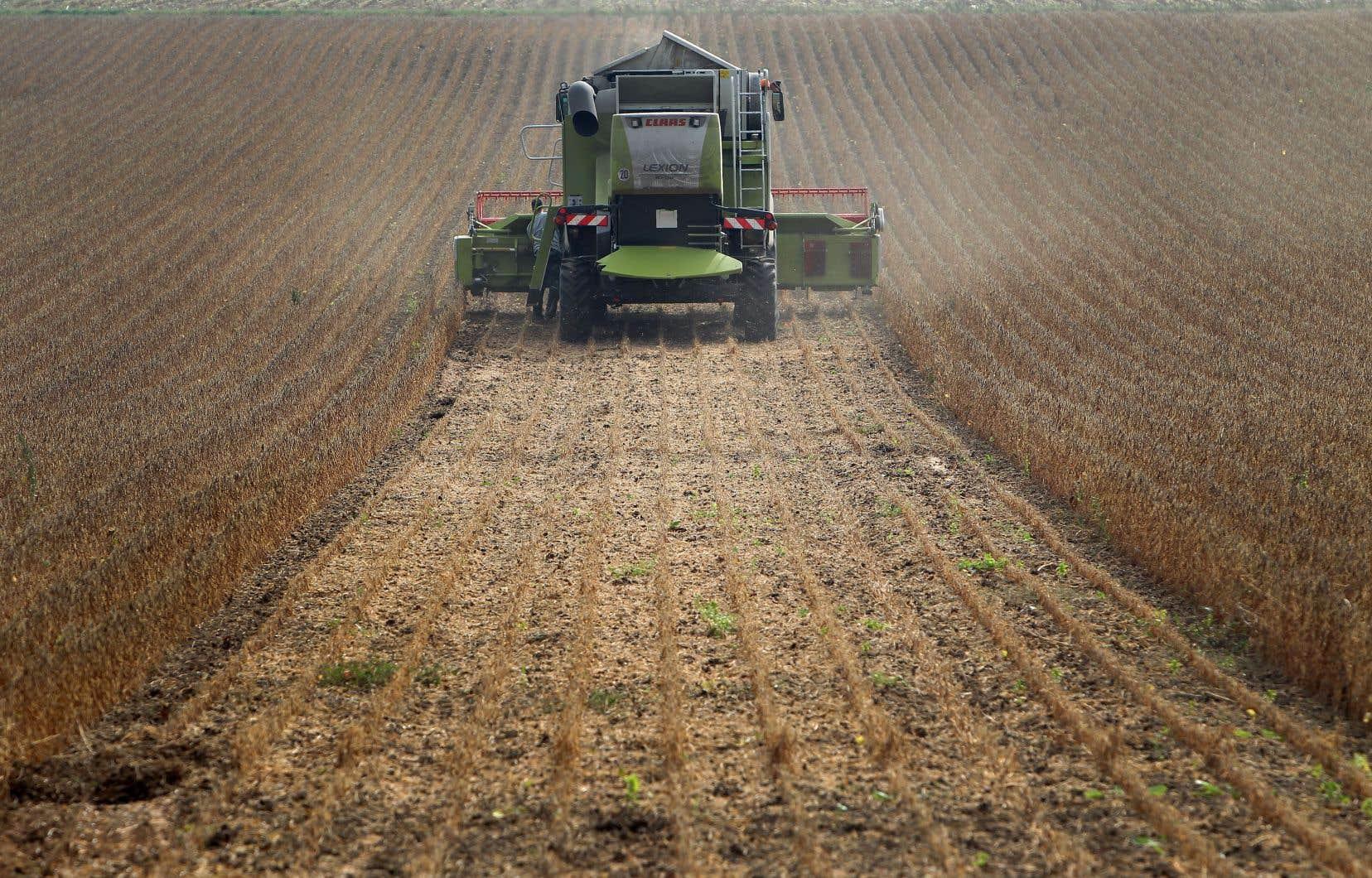Le comité doit entre autres se pencher sur les semences traitées aux insecticides, plus précisément le maïs et le soya.