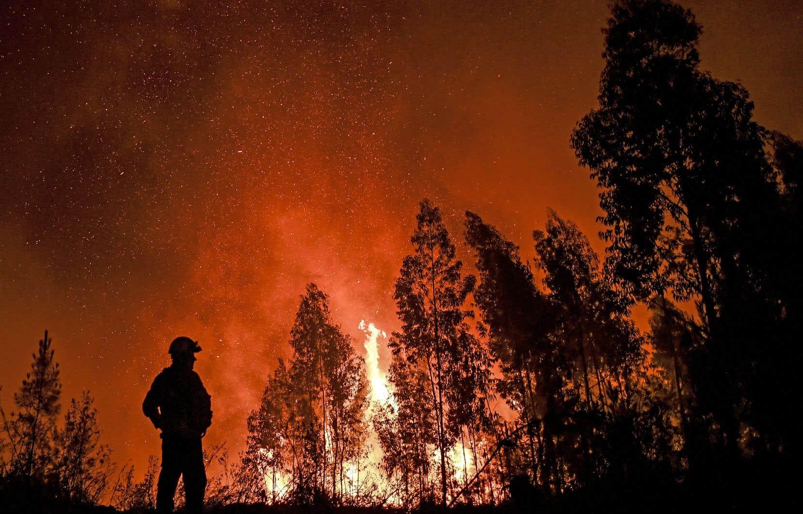 Les pompiers espéraient circonscrire les incendies de forêt dimanche, mais des vents violents, par une température de 35 degrés Celsius, ont provoqué de nombreuses reprises.