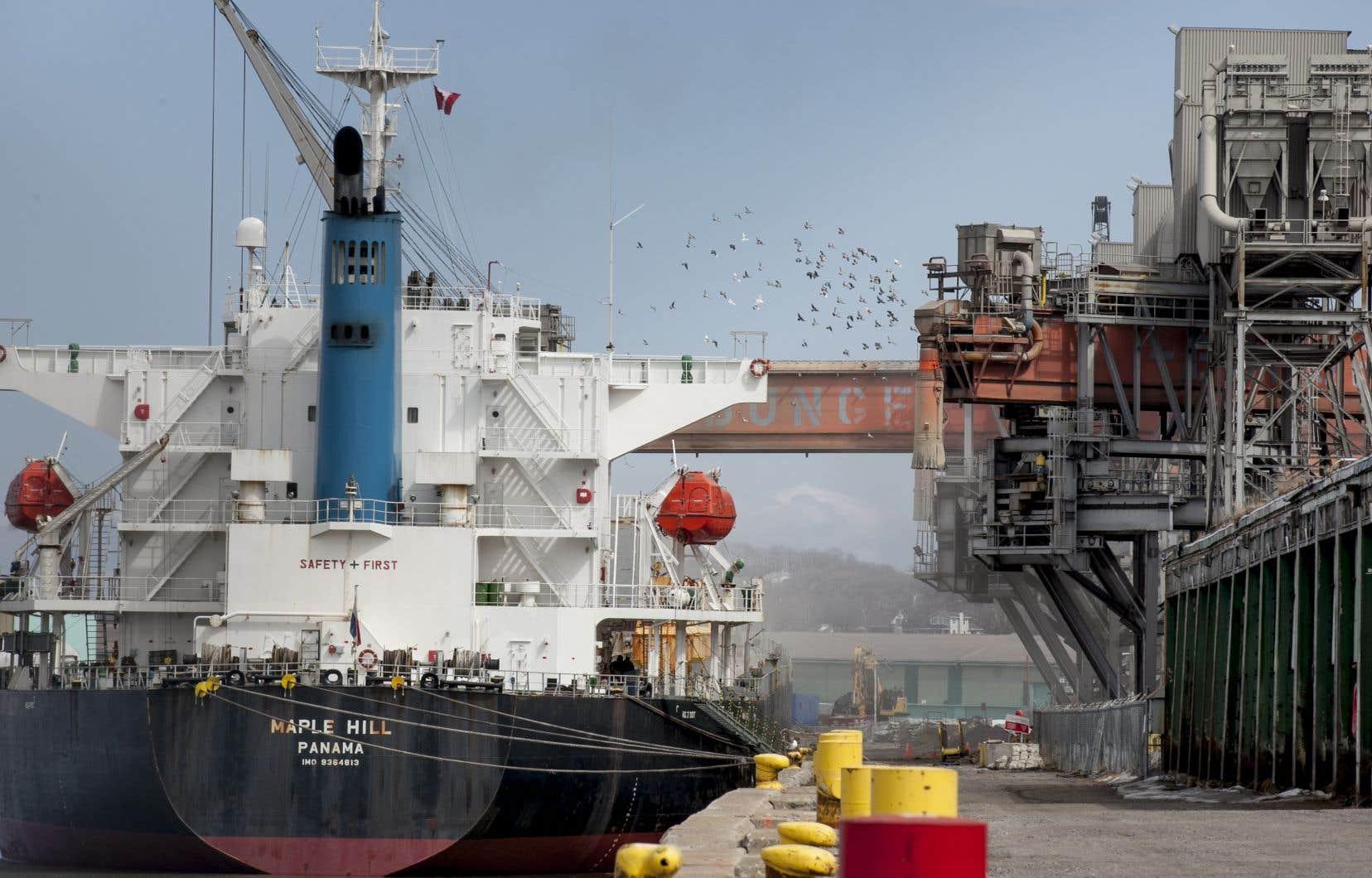 «Malgré le gain obtenu à la suite d'une action collective relative à un incident survenu en 2012 et relié à la poussière rouge, le problème demeure très présent et risque même d'augmenter avec le projet d'agrandissement du port», rappelle l'auteure.