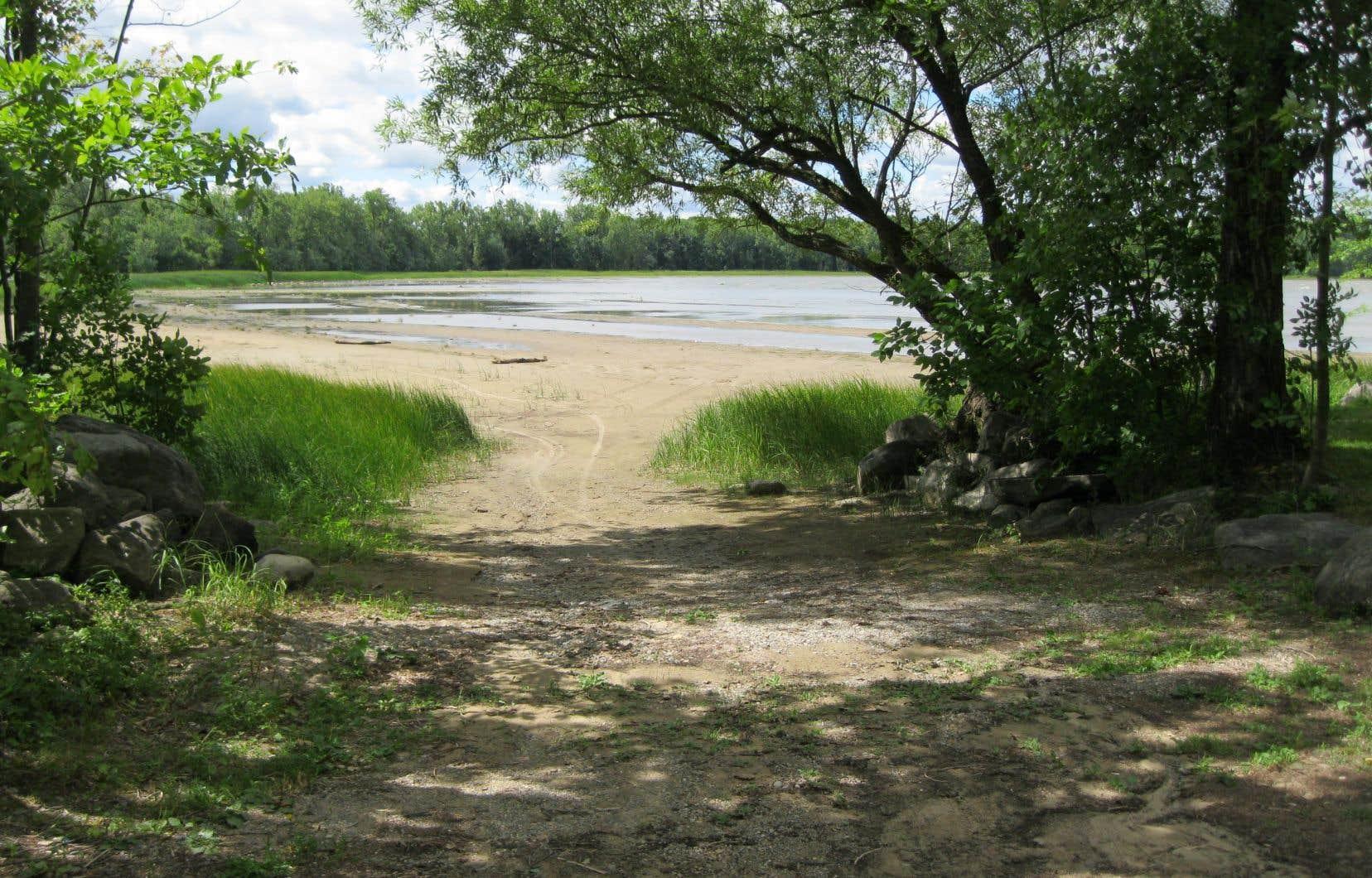 Parc-nature de l'Anse-à-l'Orme, Montréal