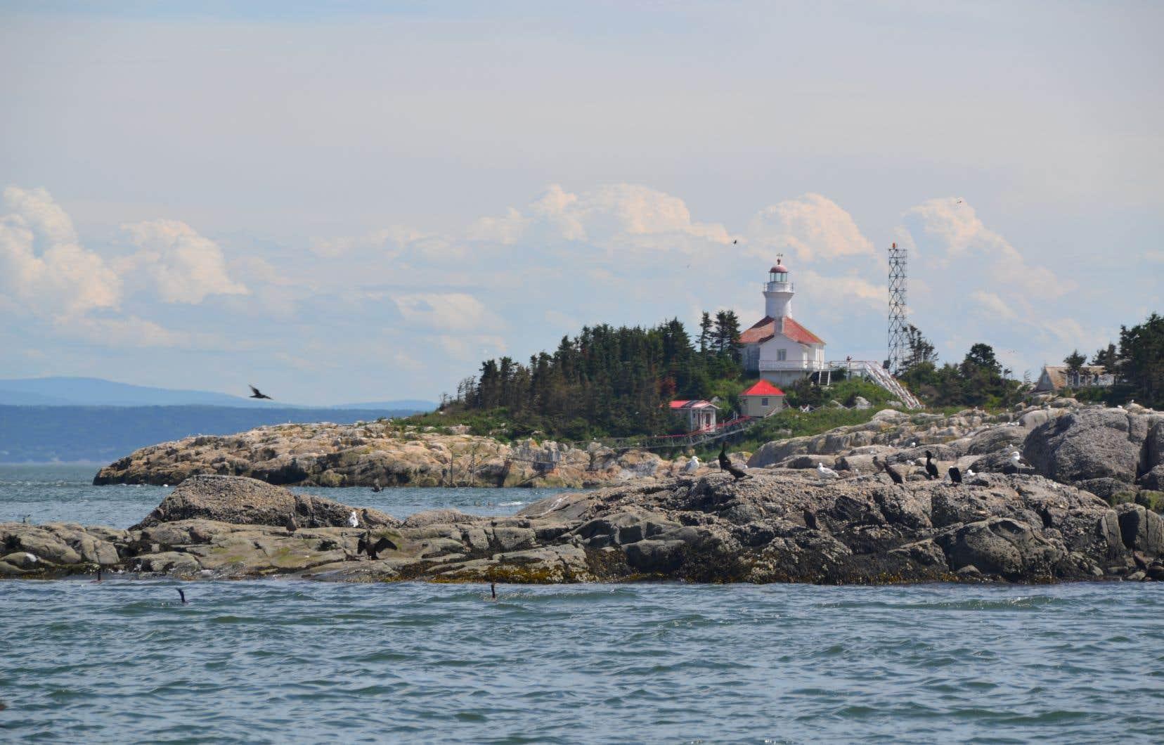 Depuis 1985, le trio des îles du Pot à l'Eau-de-Vie appartient à la société Duvetnor, qui a transformé en auberge le joli phare de l'endroit. Mais ce sont bien les oiseaux qui sont les maîtres des lieux.