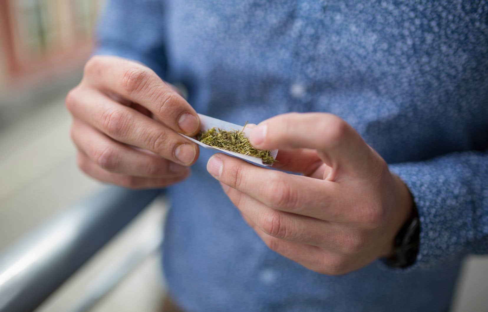 Selon les résultats de l'étude, les hommes ont été près de deux fois plus poussés à consommer du cannabis que les femmes.