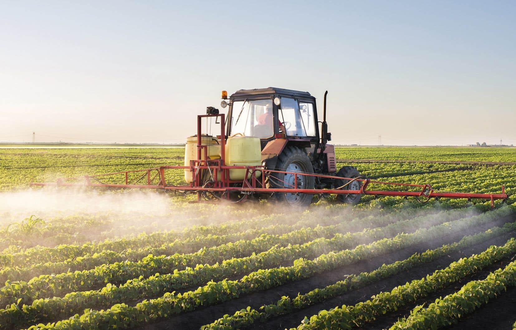 Les agronomes sont tenus de produire une «justification» qui précise notamment «les raisons» qui soutiennent l'utilisation d'un pesticide, mais aussi le nom du produit et les quantités nécessaires. Ce document doit être conservé par l'agriculteur.