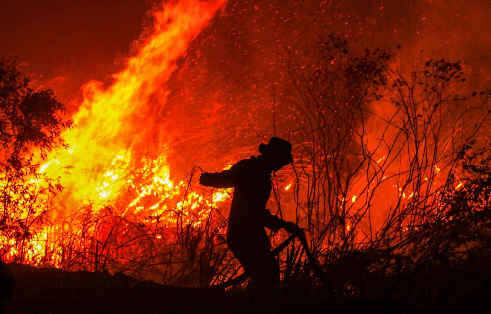 Les feux de forêt ont progressé, alorsque le pays affronte une sécheresse intense cette année.